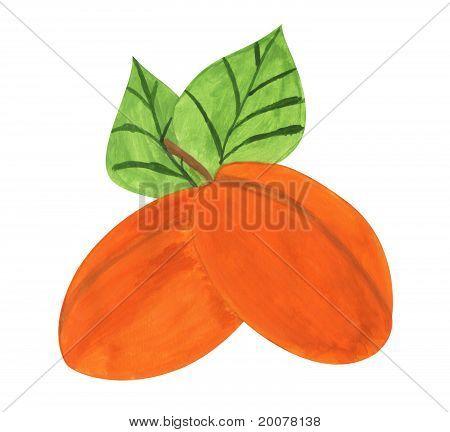 Apricots, Gouache Paint