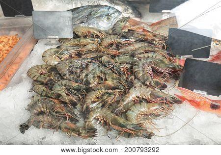 Fresh shrimps in supermarket