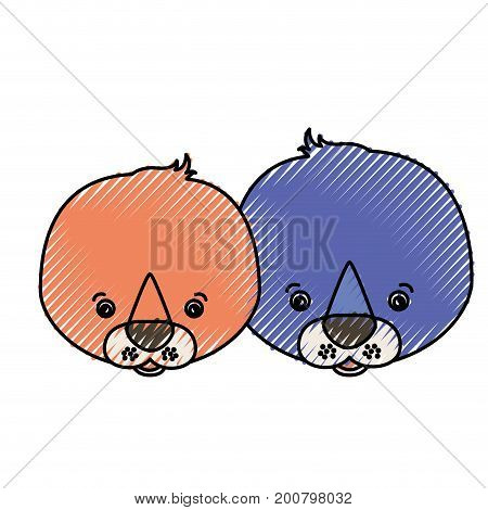 color crayon silhouette caricature face couple cute animal seals vector illustration