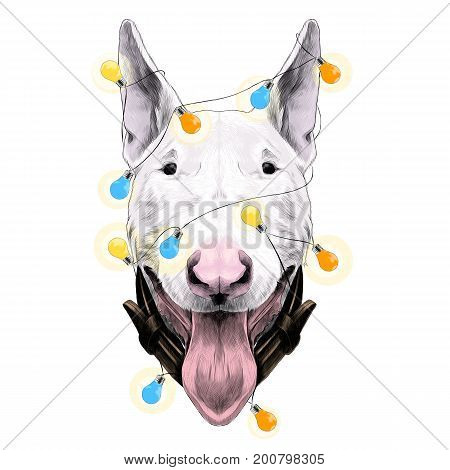 dog head breed bull Terrier sketch vector graphics color new year's holiday with lights