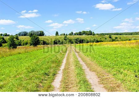 The road in the fields with grass mowed along both sides.