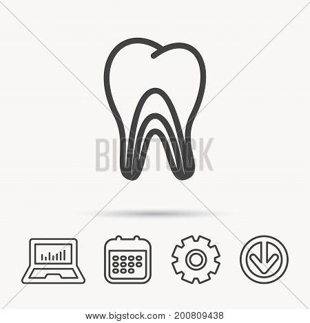 Dentinal tubules icon. Tooth medicine sign. Notebook, Calendar and Cogwheel signs. Download arrow web icon. Vector