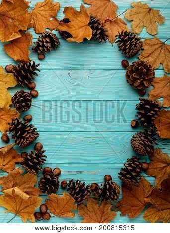 Flat lay frame of autumn leaves cones and nuts on a wooden background of azure color. Selective focus.