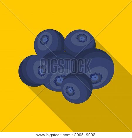 Blueberry berries, sweet fruit. Fruit single icon in flat style vector symbol stock illustration .