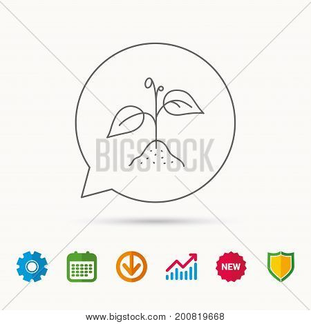 Plant with leaves icon. Agricultural or gardening sign symbol. Calendar, Graph chart and Cogwheel signs. Download and Shield web icons. Vector