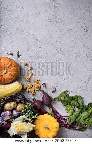 Different Vegetables Arranged. Colorful Harvest. Copy Space.