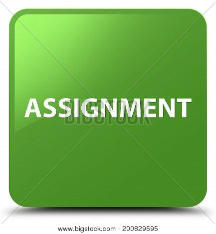 Assignment Soft Green Square Button