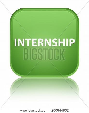 Internship Special Soft Green Square Button