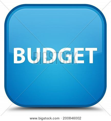 Budget Special Cyan Blue Square Button