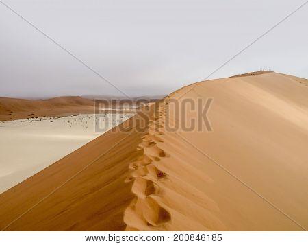 Namib desert scenery around the Sossusvlei area in Namibia Africa