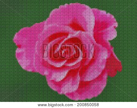 Illustration. Cross-stitch. Scarlet rose on a green background.