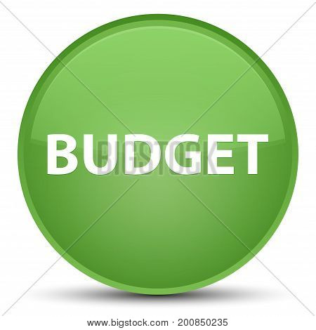 Budget Special Soft Green Round Button