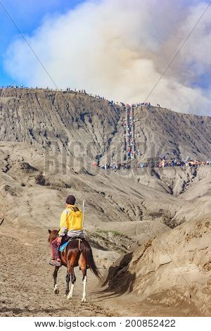 Unidentified horse rider with his horse at Mt.Bromo Tengger Semeru national park. The horse is a working horse and can be rent by visiting tourist.
