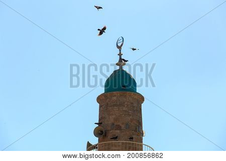 A flock of crows circling above the minaret