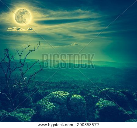 Silhouette of rock and trees against blue sky with bright full moon above wilderness area in forest. Serenity nature background. Outdoor at nighttime. Cross process. The moon taken with my own camera.