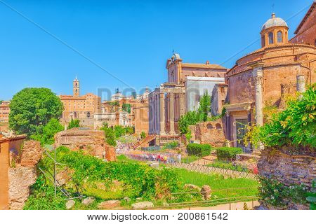 Archaeological And Historical Objects In Rome, United By The Name - Roman Forum. Roman Forum.temple