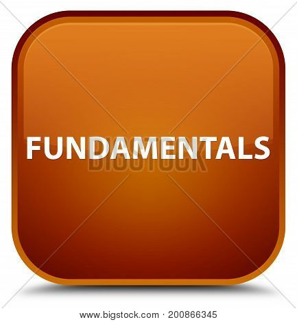 Fundamentals Special Brown Square Button