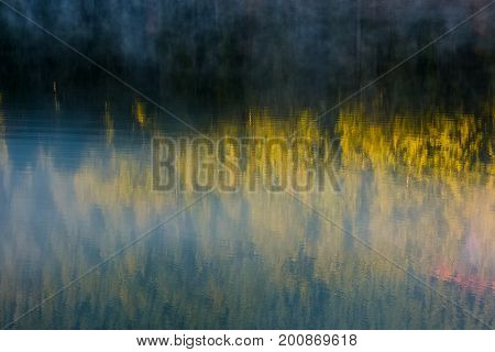 Lake Surface Reflecting Spruce Forest
