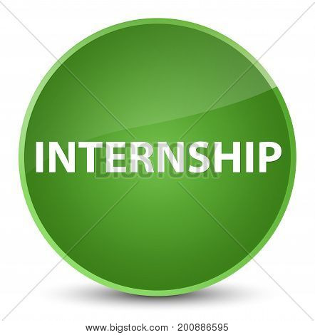 Internship Elegant Soft Green Round Button