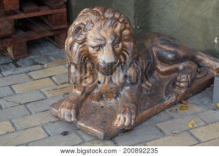 Statue of a lion on a city street. Kiev Ukraine