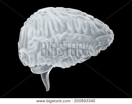Frozen brain, brain freeze concept. Side view. 3D illustration