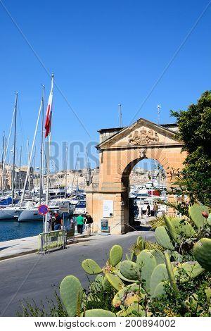 VITTORIOSA, MALTA - MARCH 31, 2017 - Arch leading to the marina with prickly pear cactus in the foreground Vittoriosa (Birgu) Malta Europe, March 31, 2017.