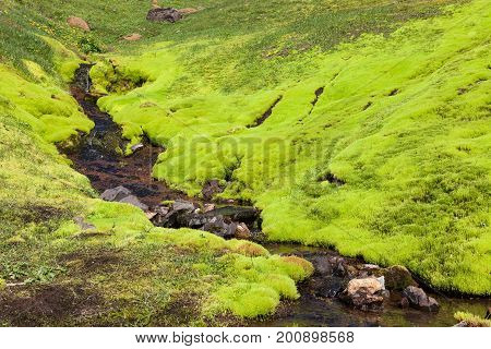 Iceland Moss Landscape. Small River Stream Running Down The Bright Green Mossy Hill In Iceland. Brig