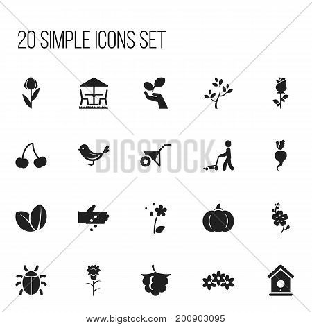 Set Of 20 Editable Planting Icons. Includes Symbols Such As Handcart, Daffodils, Grass Cutting Machine
