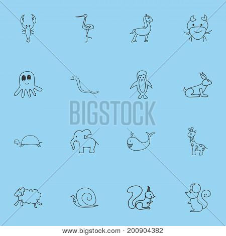 Set Of 16 Editable Zoology Doodles. Includes Symbols Such As Ewe, Polar Bird, Serpent And More