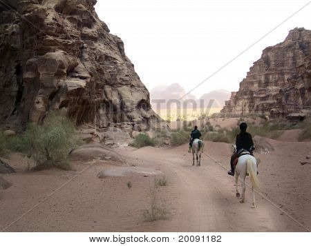 Trip On Horses