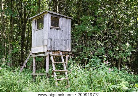 Wooden tree stand in a forest, horizontal view. Box stand, also deer stand. Enclosed platform to elevate the hunter for a better vantage point and to keep him hidden. Heuberg, Salzburg, Austria. Photo