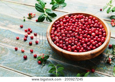 Ripe cowberry (lingonberry partridgeberry foxberry) in wooden bowl on rustic vintage background.