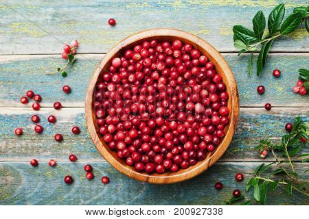 Ripe fresh cowberry (lingonberry partridgeberry foxberry) in wooden bowl on rustic vintage table from above.