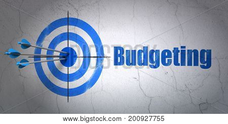 Success finance concept: arrows hitting the center of target, Blue Budgeting on wall background, 3D rendering