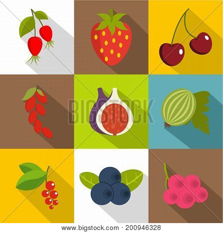 Edible fruit icons set. Flat set of 9 edible fruit vector icons for web with long shadow