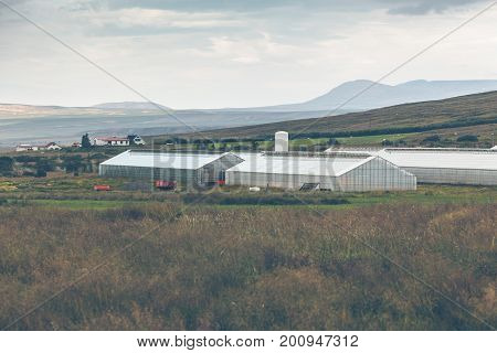 Geothermal greenhouses in the Northern Iceland. horizontal shot