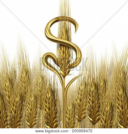 Agriculture Farming business as ripe wheat shaped as a dollar currency as a agricultural cash crop and farming industry symbol as a 3D illustration on a white background.