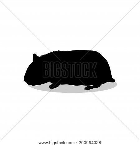 Hamster rodent black silhouette animal. Vector Illustrator.