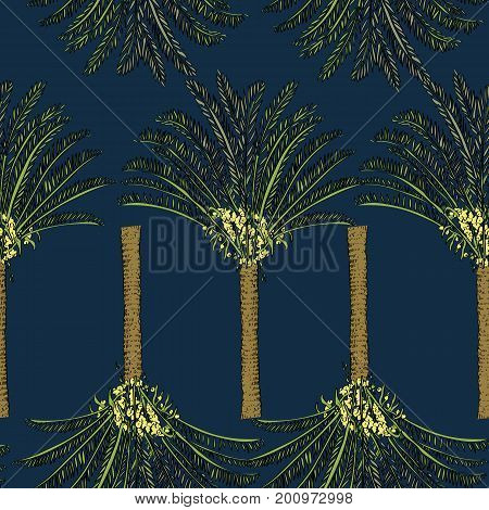 Vector Drawn Cycas Palm Tree Seamless Pattern On Blue Background In A Sketch Style. Exotic Collectio