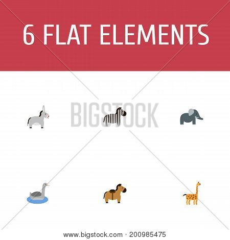 Flat Icons Horse, Pony, Waterbird And Other Vector Elements