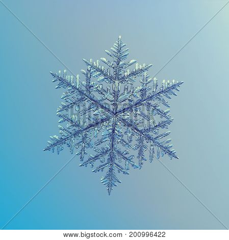 Real snowflake macro photo: very big fernlike dendrite snow crystal with elegant shape, hexagonal symmetry and long, ornate arms with side branches. Snowflake glittering on blue - gray background.