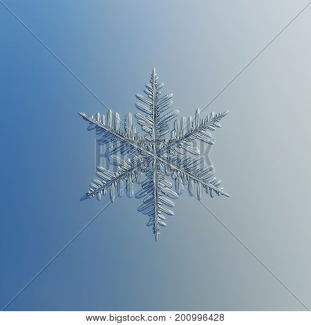 Real snowflake macro photo: stellar dendrite snow crystal with complex, elegant shape, fine hexagonal symmetry and ornate arms with long side branches. Snowflake glittering on gradient background.