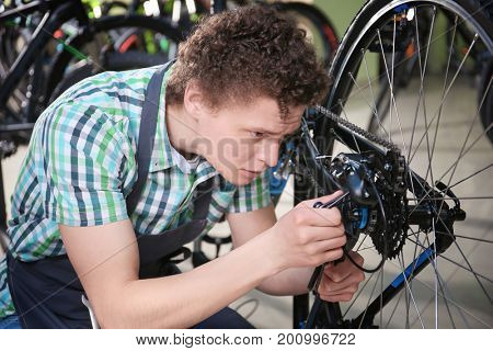 Young man checking bicycle in repair shop