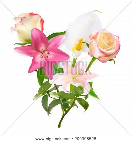 Vector Illustration with Pink Lily, Calla and Roses Isolated on White Background EPS10