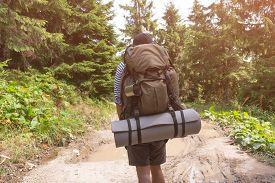 Man tourist walking on a forest mountain path. sun-light.