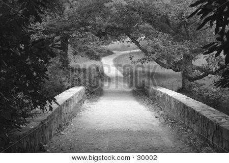 Stone Bridge In Black And White