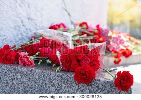 Red Carnation Flowers At The Memorial To Fallen Soldiers In The World War Ii.