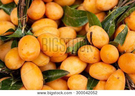 Ripe Bright Orange Sweet Maprang (marian Mango, Plum Mango, Marian Plum, Gandaria, Mayong Chid)