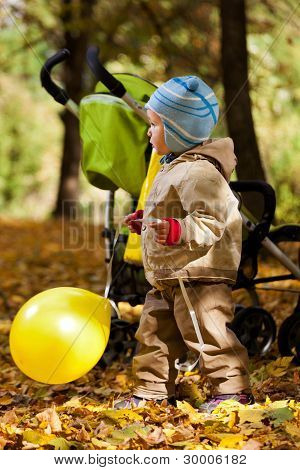 Baby Boy In Autumn Leaves Holding Balloon
