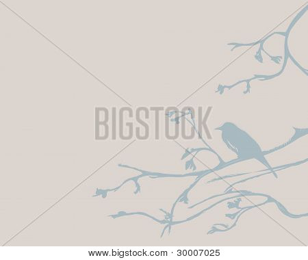 Blue bird on beige background